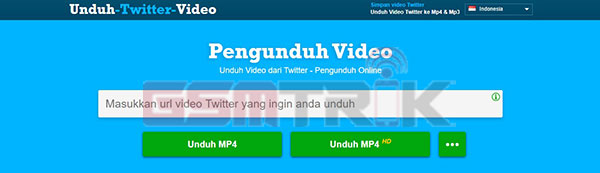 Download Video Twitter Online