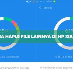 Cara Hapus File Lainnya di HP Xiaomi 1 Menit Bersih