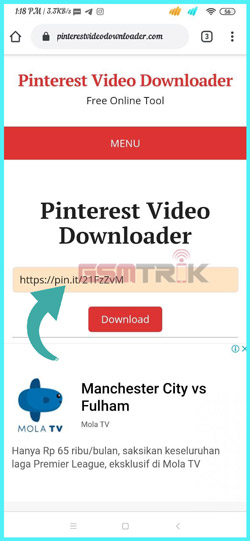 2 Paste Link Video Pinterest Downloader