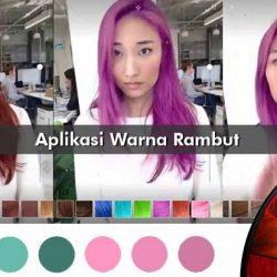 Aplikasi Warna Rambut